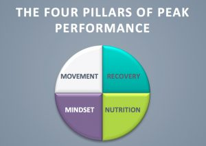 The Four Pillars of Peak Physical Performance